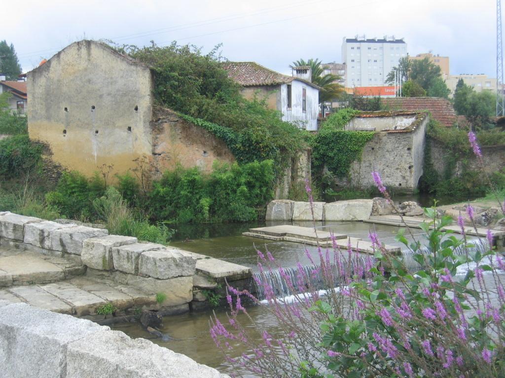 alte Mühle im Park