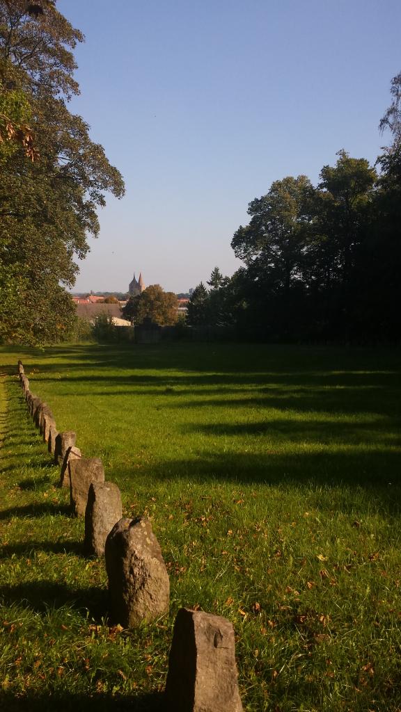 Feld mit Grabsteinen