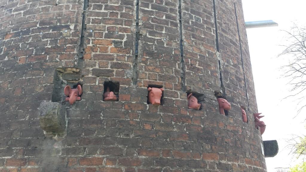 Tiere im Plauer Torturm