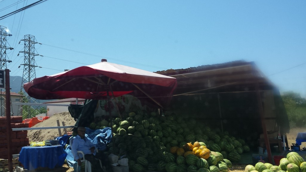 Überall Melonenverkäufer