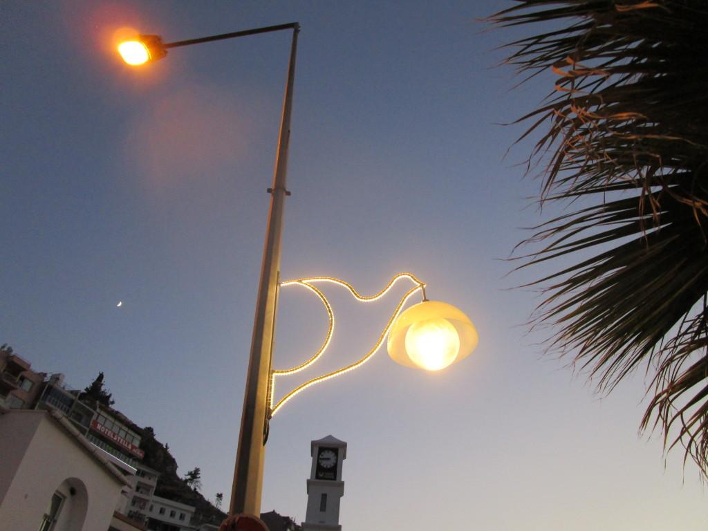 Vogelbeleuchtung