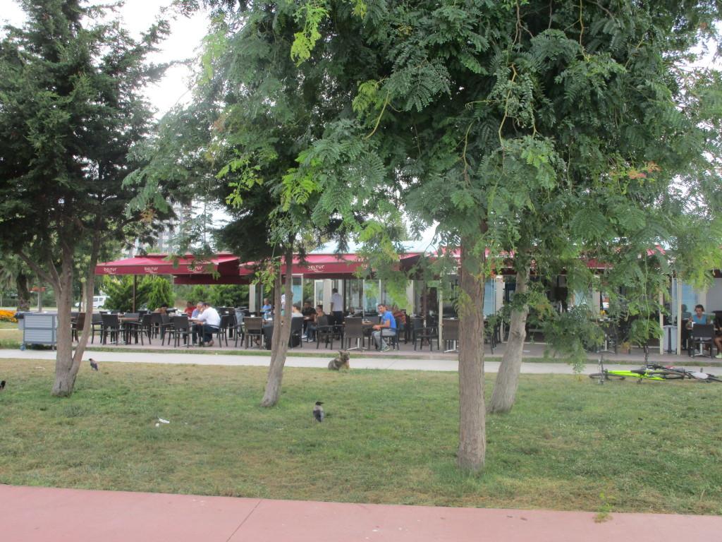 Cafe Beltur