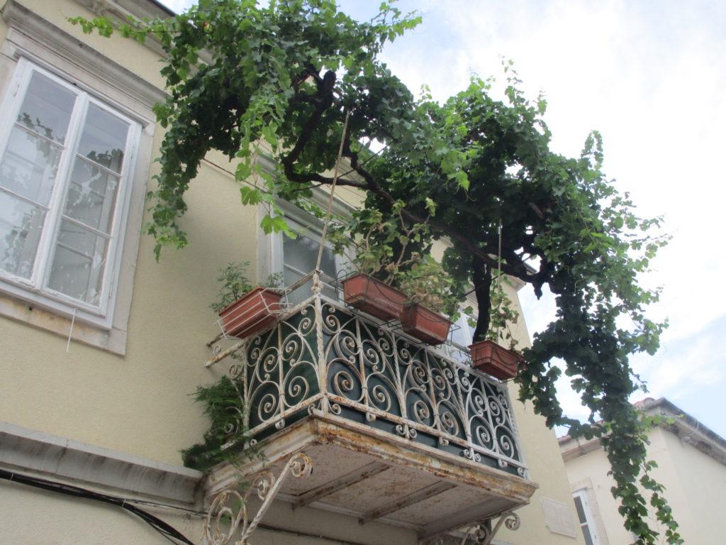 Schöner Balkon