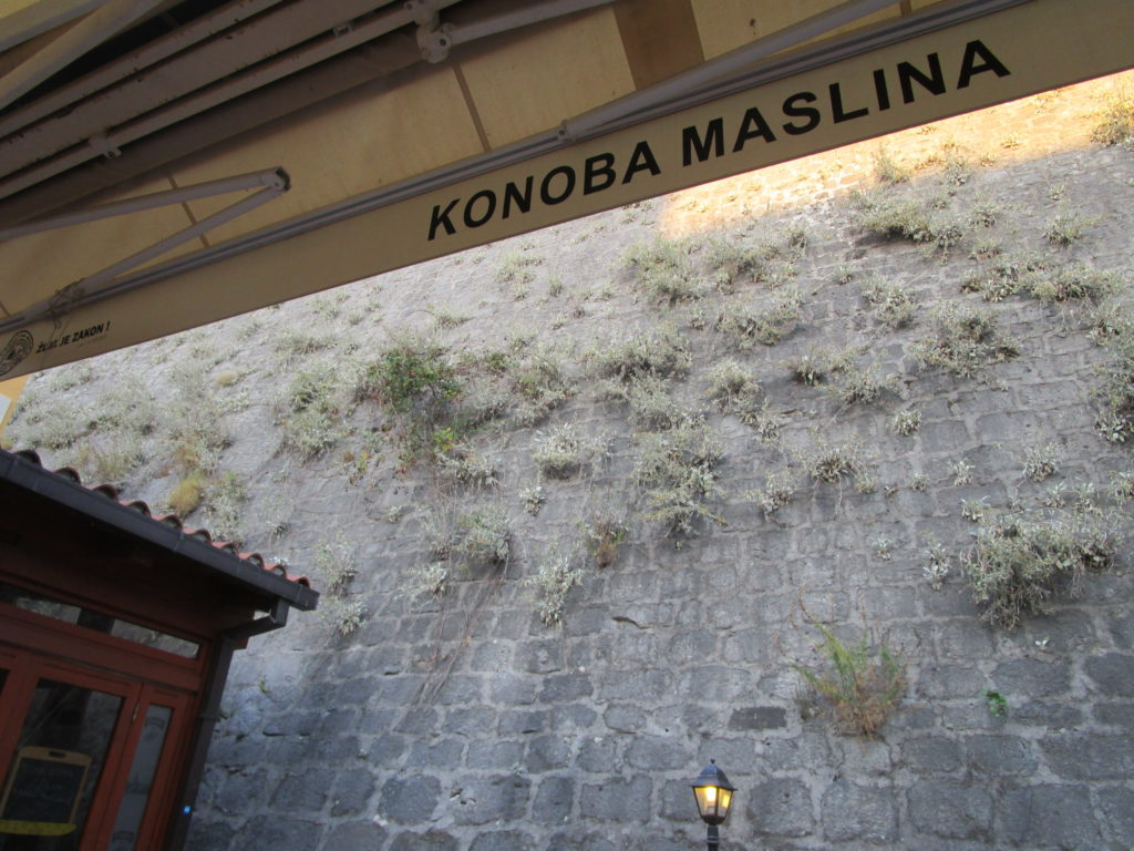 Konoba Maslina
